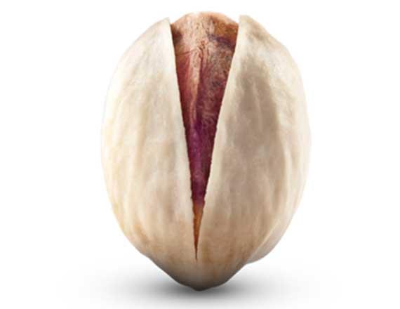 fandoghi pistachio pistachio - IRANIAN Pistachio Varieties