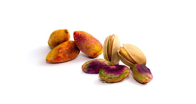 pistachio - What's the Melatonin Content of Pistachios?