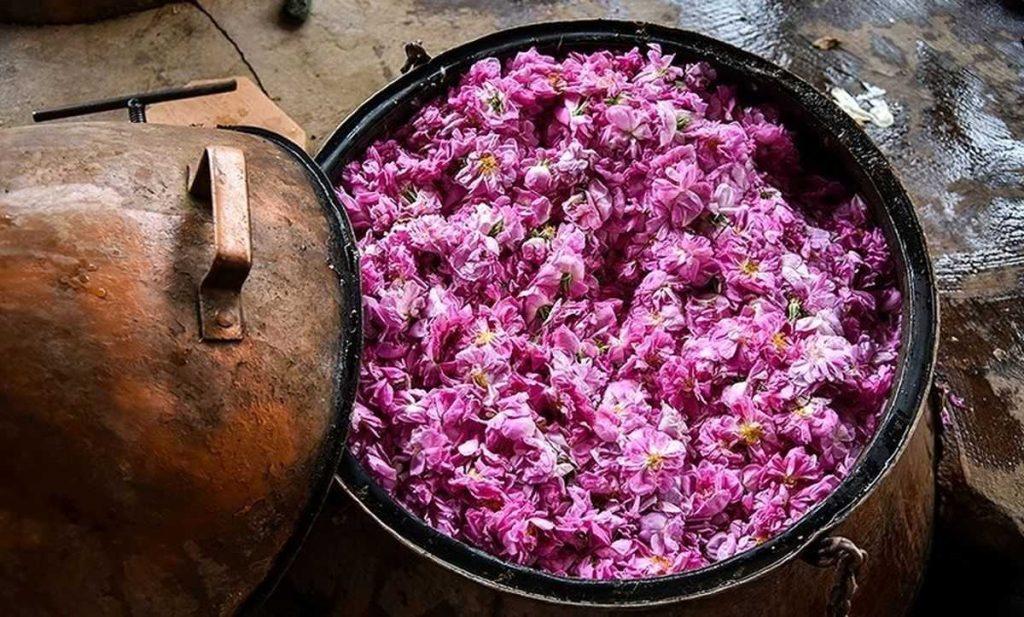 rosewater - Iran Meets 90% of Global Rosewater Demand